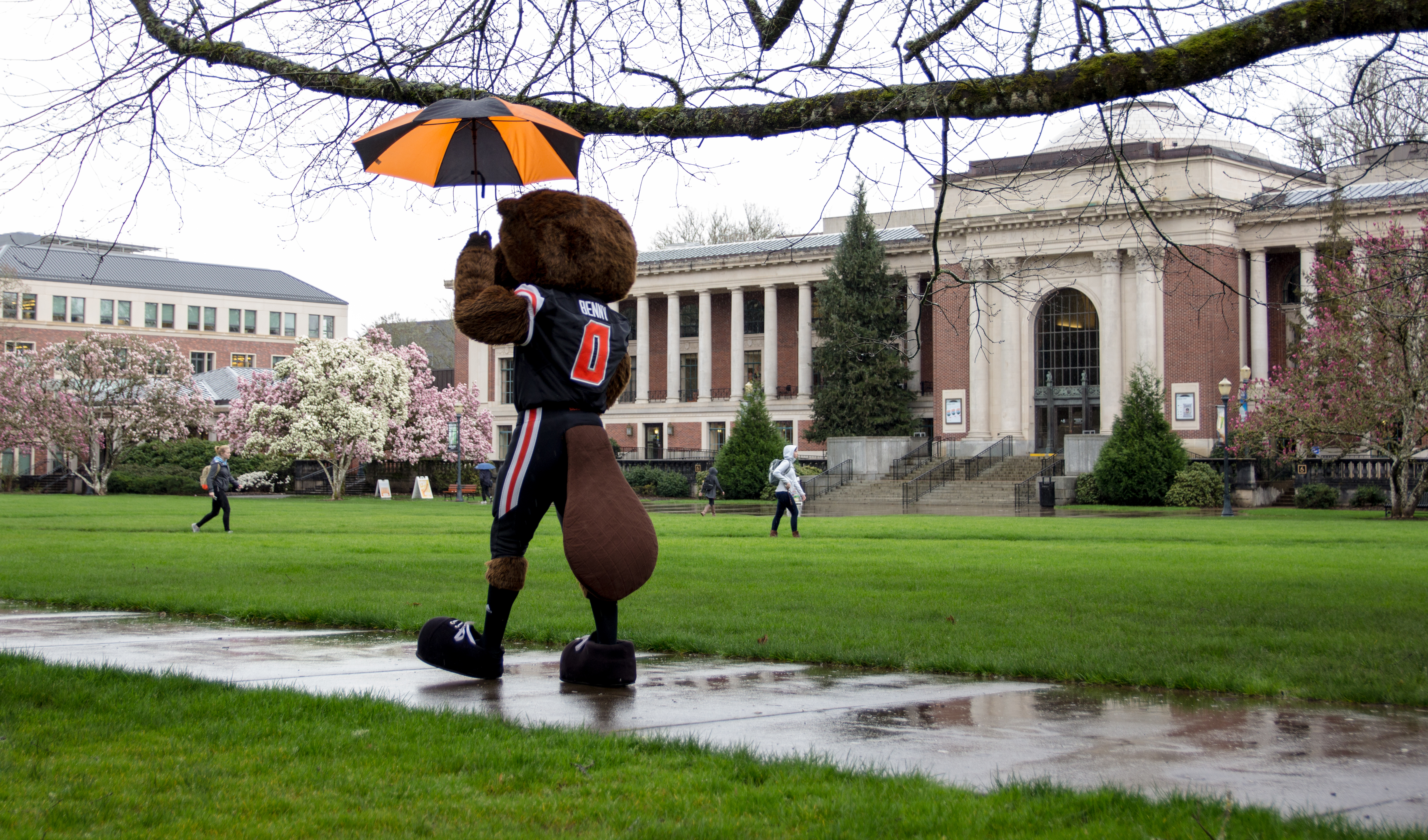 Benny Walking in Quad