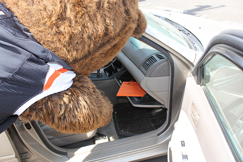 Benny Beaver checks the Motor Pool glove box
